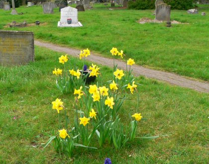 Well, what's so fascinating about cemeteries?